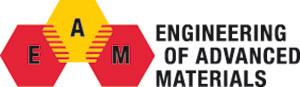 Logo Exzellenzcluster (Bild: FAU)