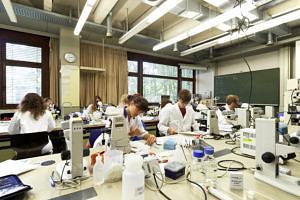Labor (Bild: FAU/David Hartfiel)