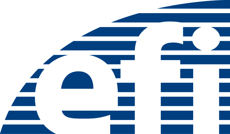 Das EFI-Logo. (Bild: FAU)