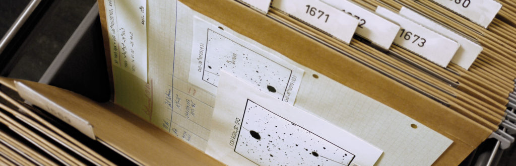 Files containing astronomical slides in the slide collection (image: Isi Kunath)