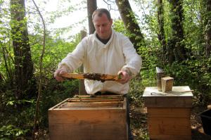 Gerhard Müller-Engler ist staatlicher Fachberater für Bienenzucht. (Bild: Privat)