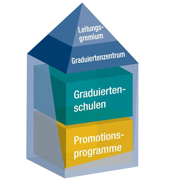 Grafik zu den Programmen der Universität