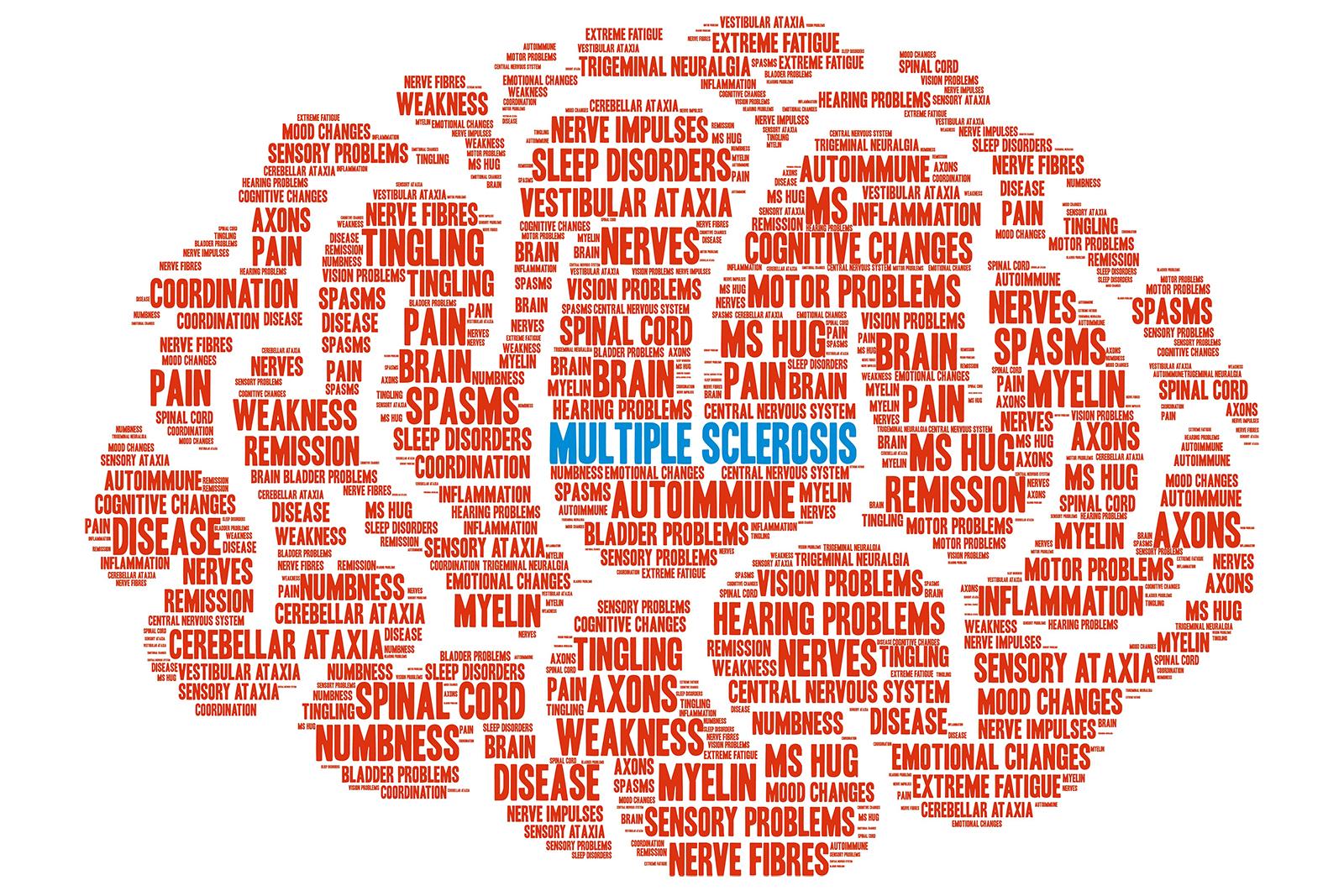 Verletzliches Nervensystem: Was beeinflusst die Schutzhülle ...