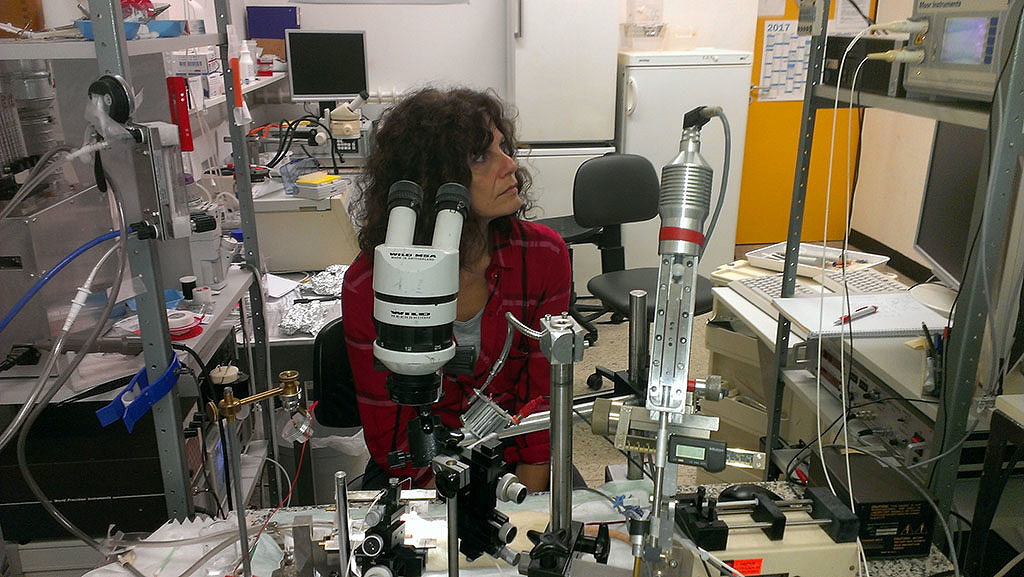 Mária Dux in a laboratory with the test setup and microscopes