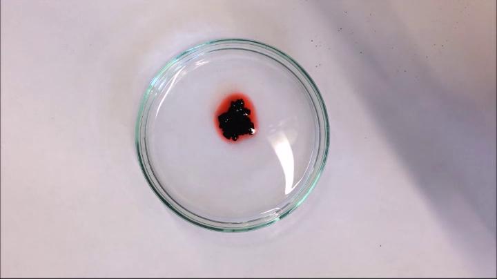 Petrischale mit rotgefärbtem Diesel und Partikel