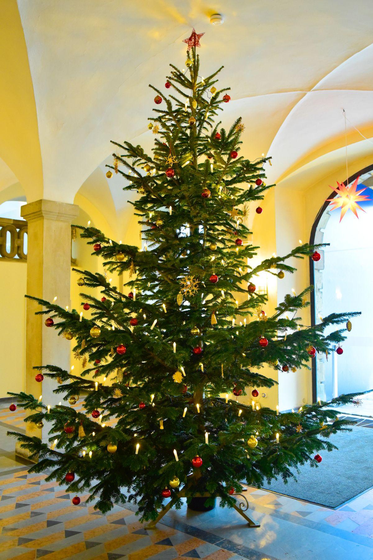 Weihnachtsbaum im Schloss