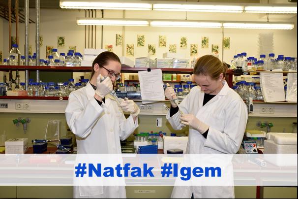 Zwei Studentinnen im Labor, darunter steht #Natfak und #lgem